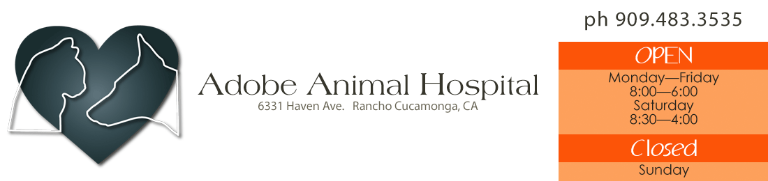 Adobe Animal Hospital, Rancho Cucamonga, CA